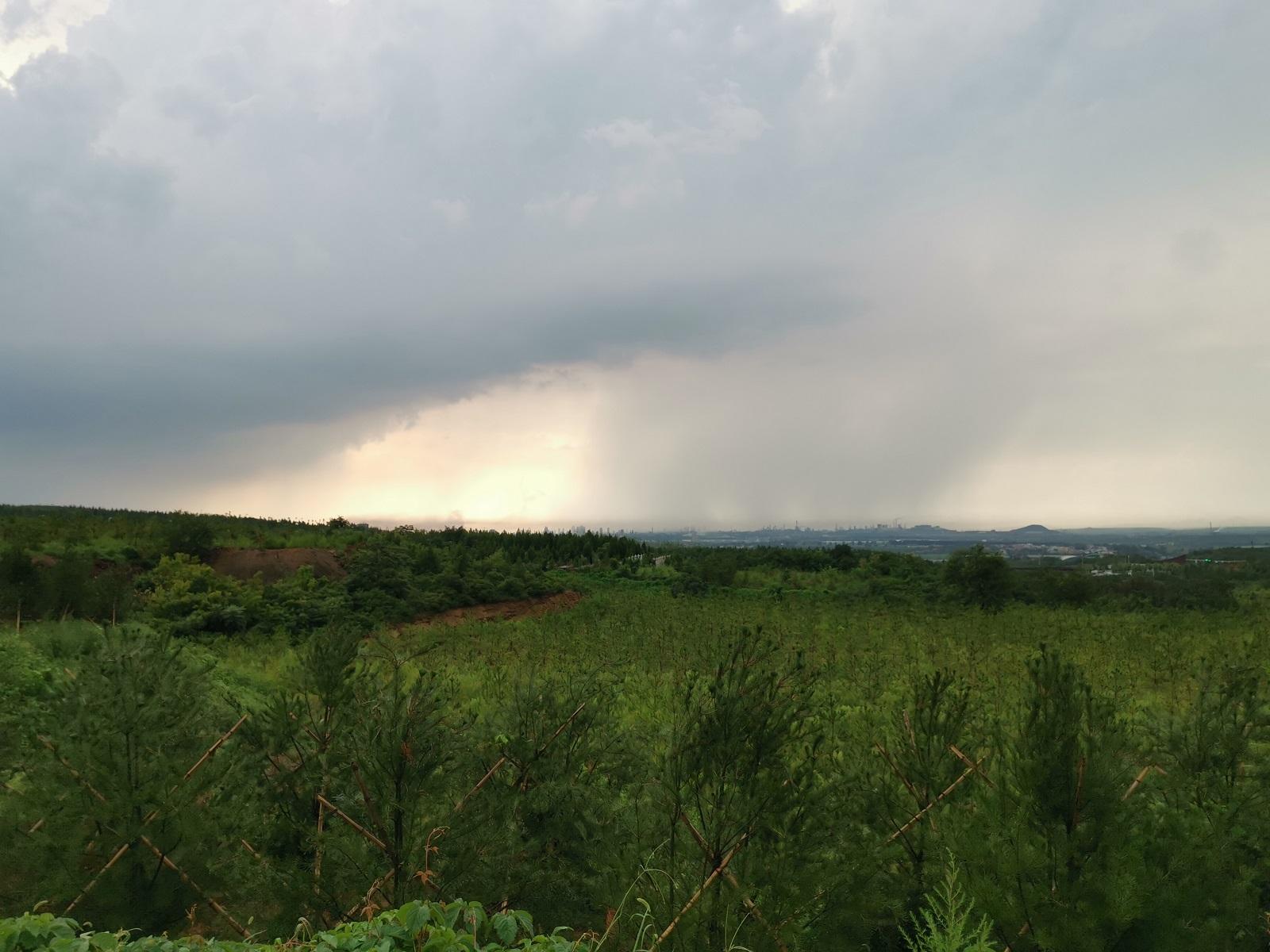 雨中登九龙山